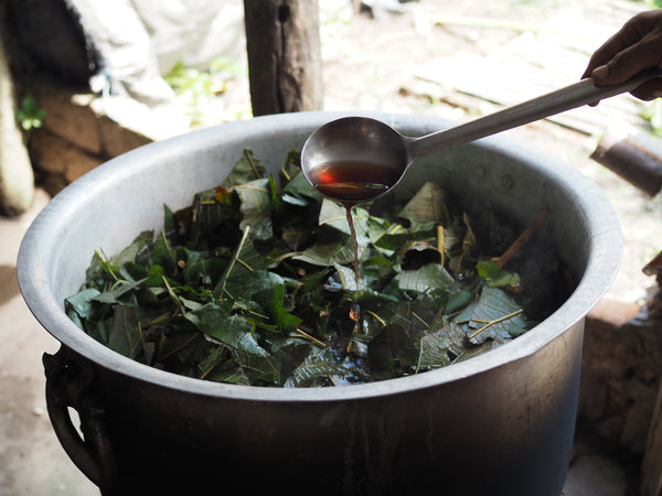 Making natural dye of teak leaves