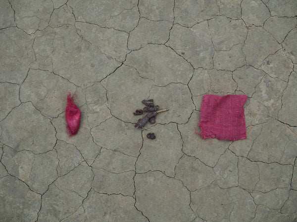 Natural dyeing with lac in Assam. Pink shades, entirely natural.