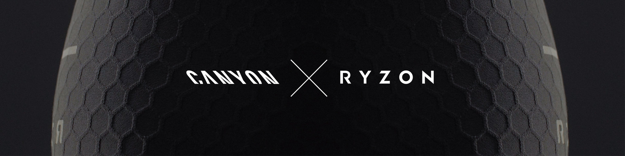 Ryzon Alliance redefined Header Image