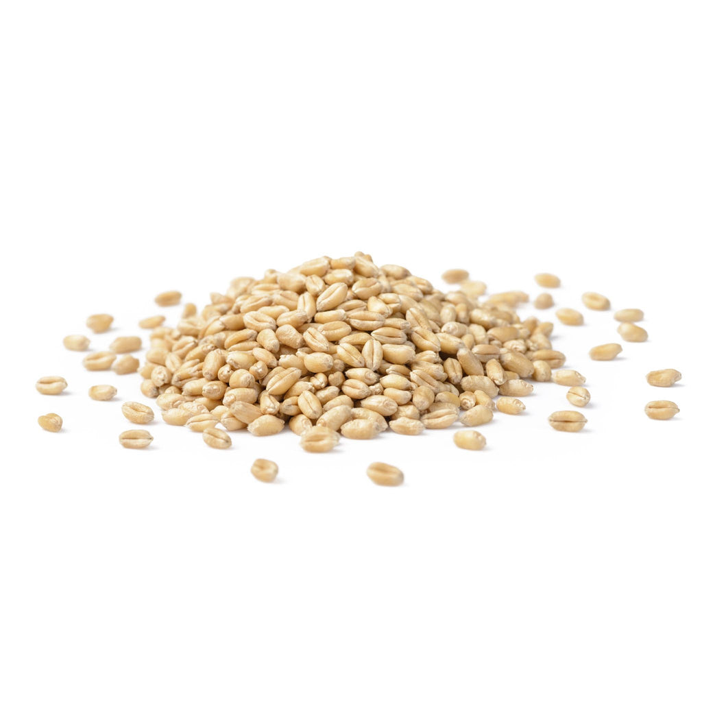 Grano - Pearled Wheat