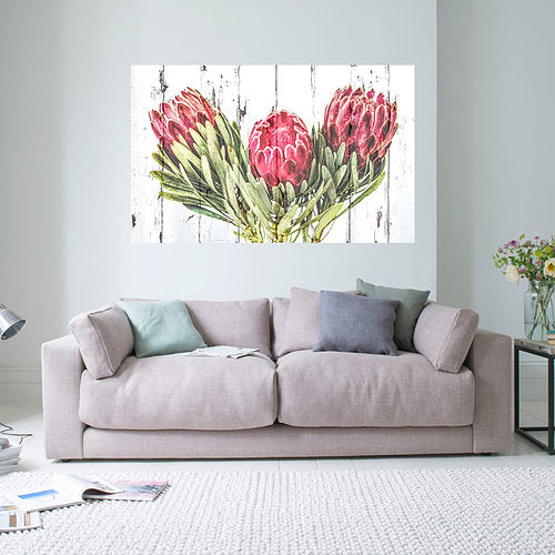 Protea Dark Pink and white