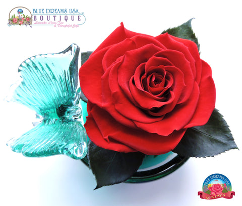 BDR-PR - Butterfly Hand-blown Dish with Large Red Rose - Blue Dreams USA Boutique
