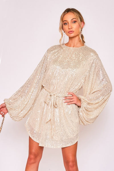 We Got Love Sequin Dress