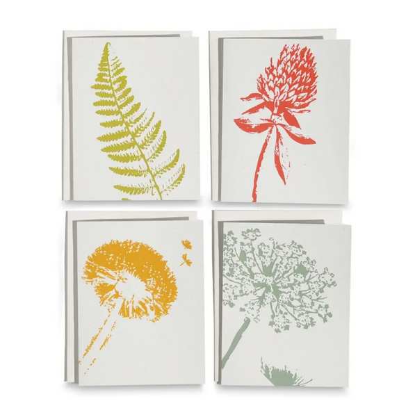 Wild Pretties Cards / Boxed Set Of 8