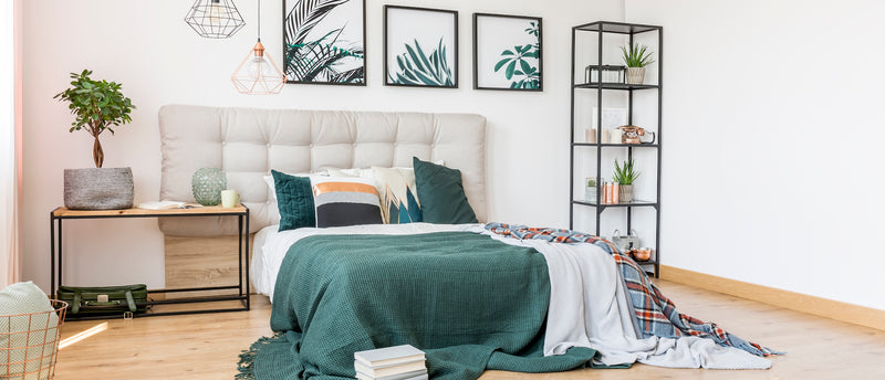 The Best Plants For Your Bedroom to Help You Sleep