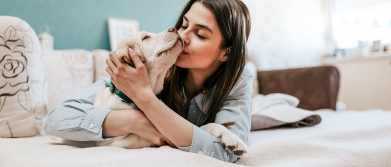 10 Ways Your Pet Can Help You Sleep Better