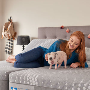 Sealy Hybrid Fendler Medium Mattress In Bedroom Girl and Pet Relaxing On Bed