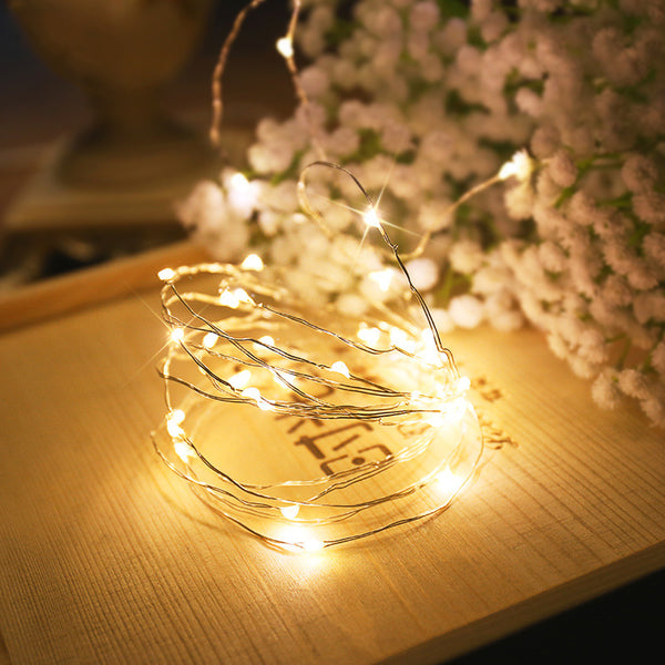 2m 5m 10m Copper Wire Cabinet Lamp Bookcase Decoration LED Light Flexible String Lamp Christmas Wedding Party Indoor Lighting - Vinyl Boutique Shop