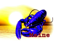 Pier 37 Custom Listing - Blue Lobster Sunset Maine - Vinyl Boutique Shop