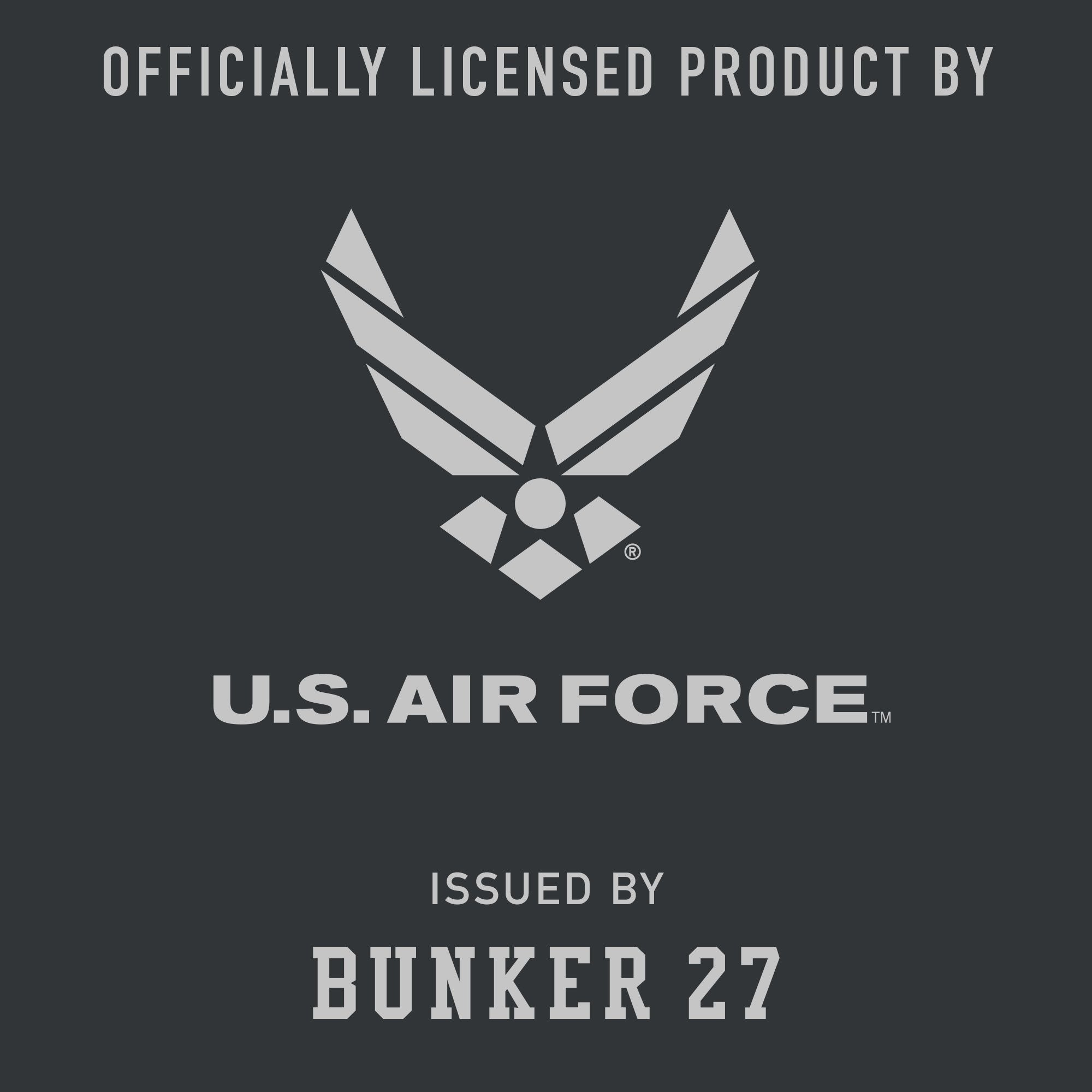 Youth Air Force Logo, Bunker 27