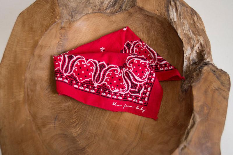 Red Fern / Wash Fast Color - Tiger Brand Bandana - Vintage Accessories