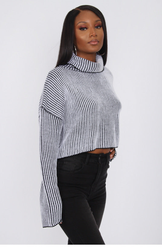 Striped Turtleneck- Tic Toc