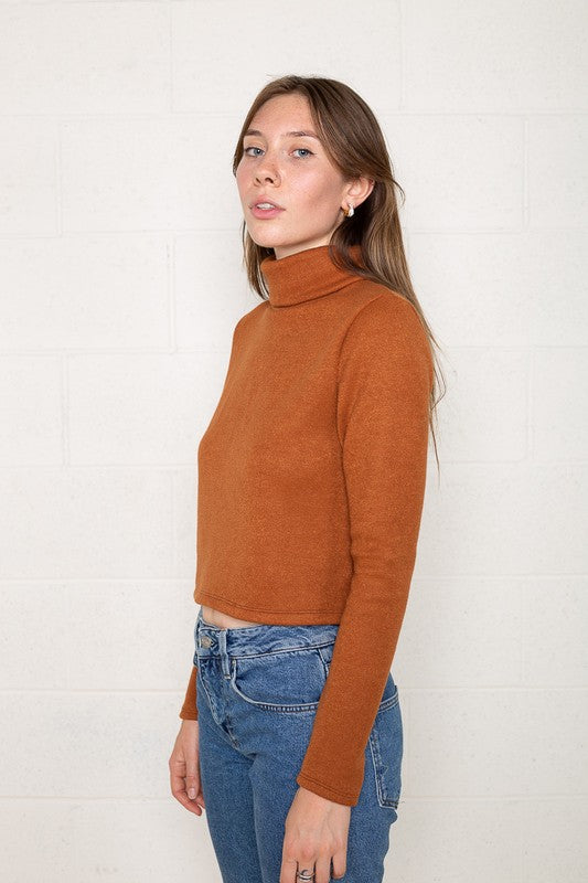 Heavy Knit Cropped Turtleneck
