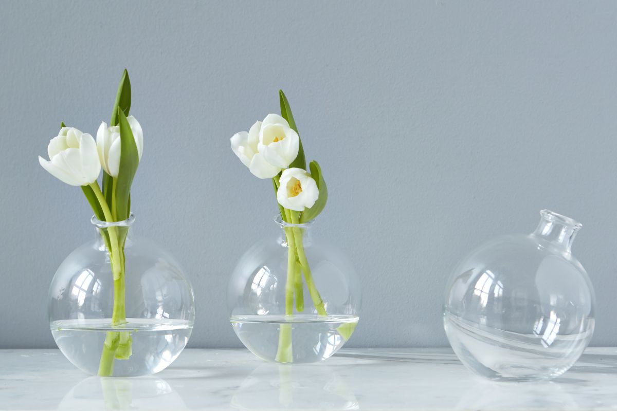 Glass vases elegant recycled glass flower and decorative vases sphere vase in clear reviewsmspy