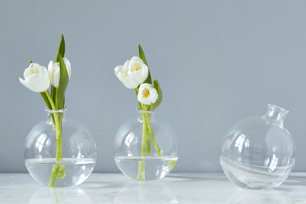Sphere Vase in Clear