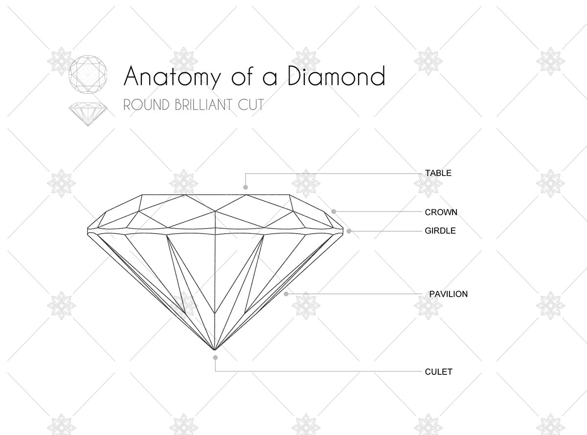 diamond outline and anatomy side view