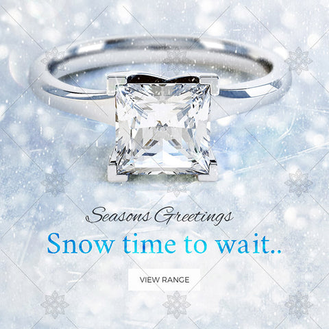 Winter Themed Engagement Ring website Banner - B1009
