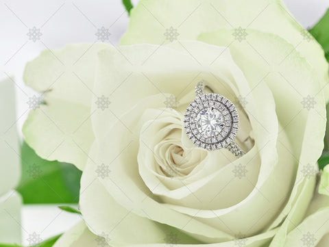 Halo Diamond Ring & White Rose  - NC3001