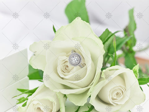 Halo Diamond Ring & White Rose  - NC3002