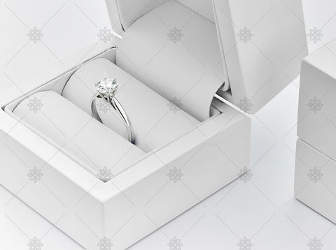 White Gold Diamond Ring in Jewellery Box - NE1040a