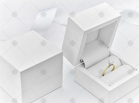 Yellow Gold Diamond Ring in Jewellery Box - NE1041b