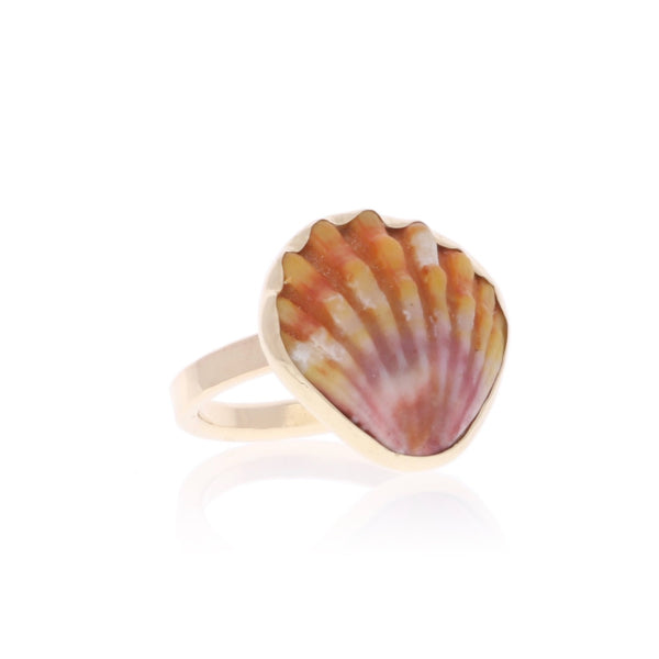 Custom Sunrise Shell Ring in gold