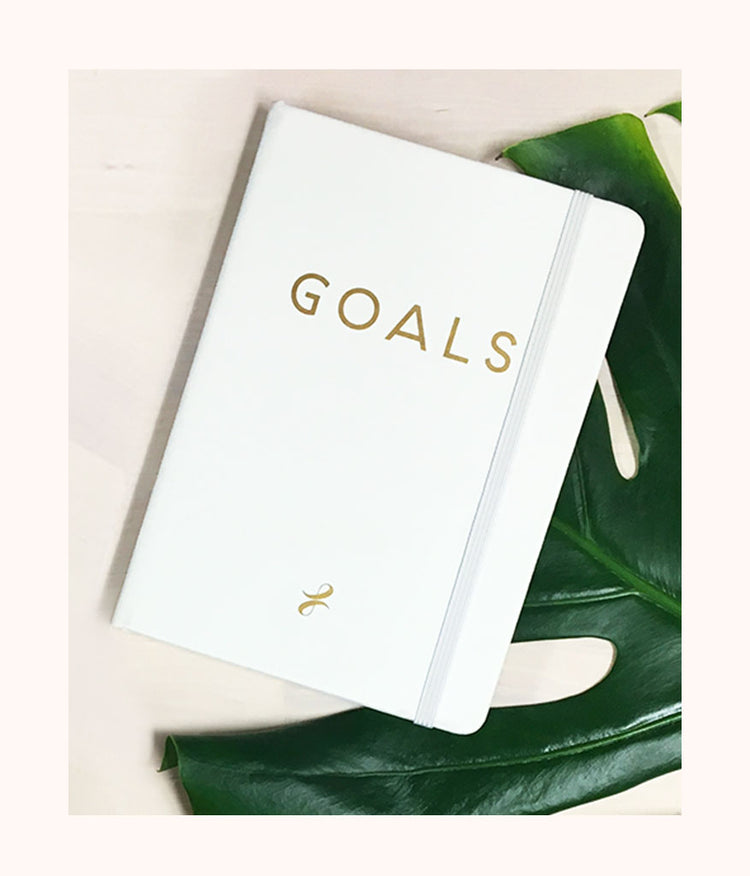 The LIVELY Notebook: Goals