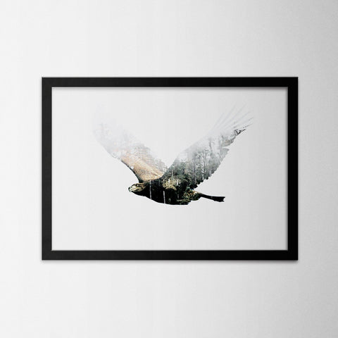Exposure Eagle - Northshire - Poster - Dekorasyon - Ev Dekorasyonu - Wall Art - Metal Wall Art - Decoration