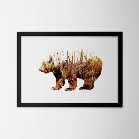 Exposure Bear - Northshire - Poster - Dekorasyon - Ev Dekorasyonu - Wall Art - Metal Wall Art - Decoration