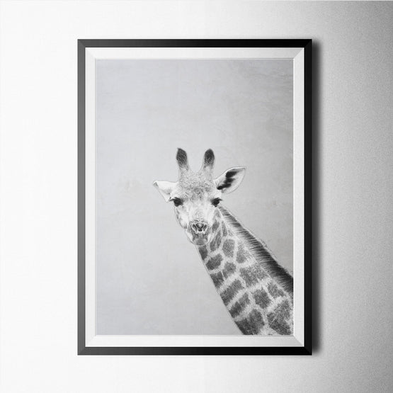 Giraffe - Northshire - Poster - Dekorasyon - Ev Dekorasyonu - Wall Art - Metal Wall Art - Decoration