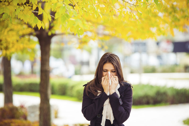 West Michigan worst place for allergies