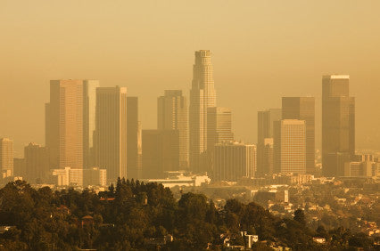 Premature births linked to air pollution cost U.S. billions