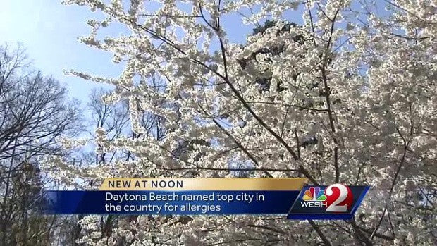 Daytona Beach named top city in the country for allergies