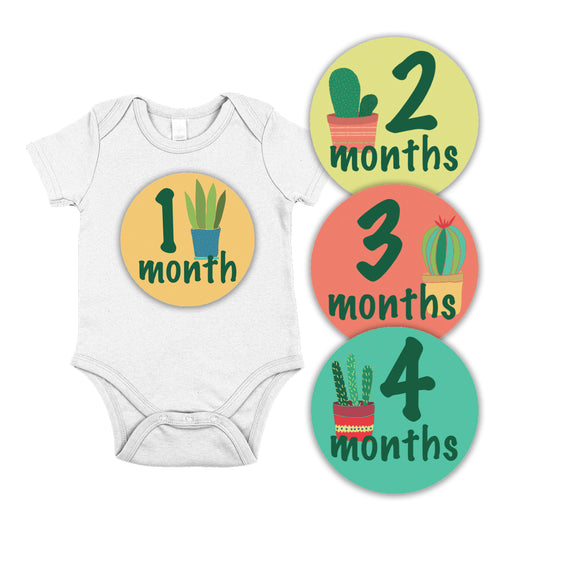Baby Month Milestone Stickers // Prickly Cactus
