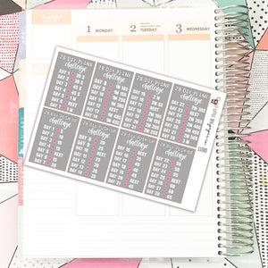 SS010 // 28 Day Plank & Push-Up Challenge // Planner Stickers