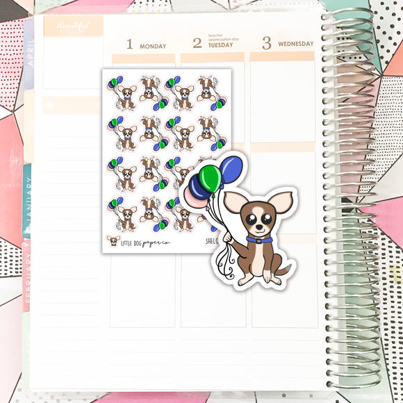 SHEL012 // Happy Birthday Sheldon // Planner Stickers