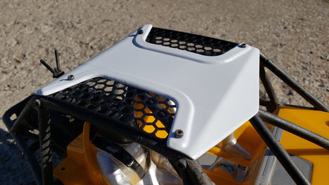 "Axial Bomber ""Hive"" T-top roof panel"