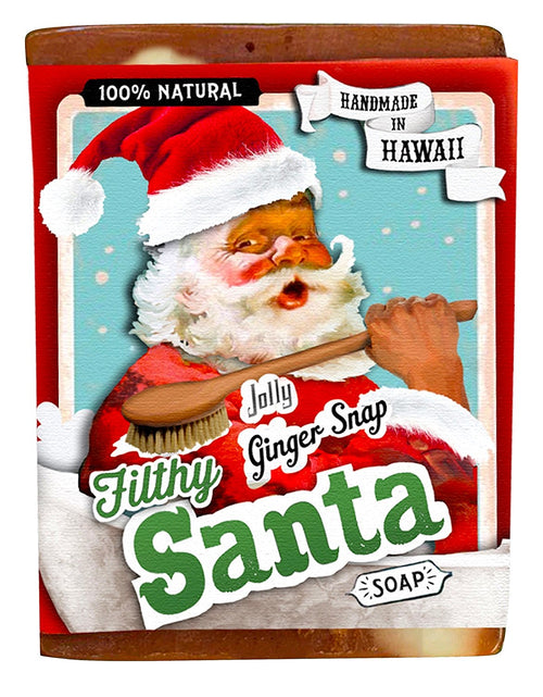 Filthy Santa all natural glycerin BAR SOAP Ginger Cinnamon Vanilla