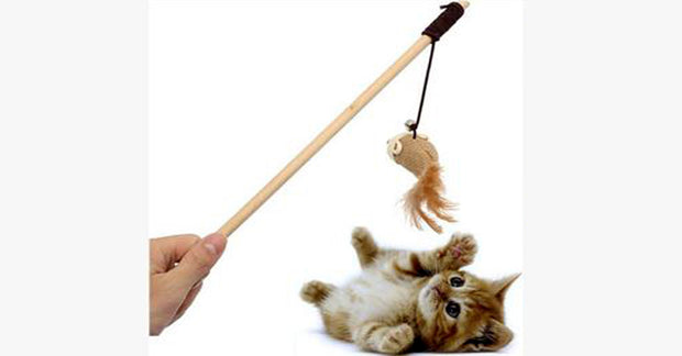 Cat Cute Design Funny Kitten Toy