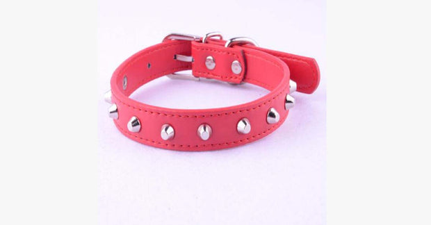 Red Rivet Leather Collar