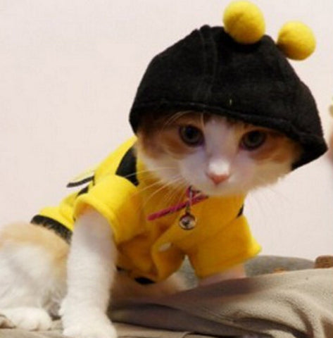 Bees Shape Cat Clothes