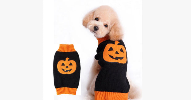 Halloween Pumpkin pet sweater in autumn and winter