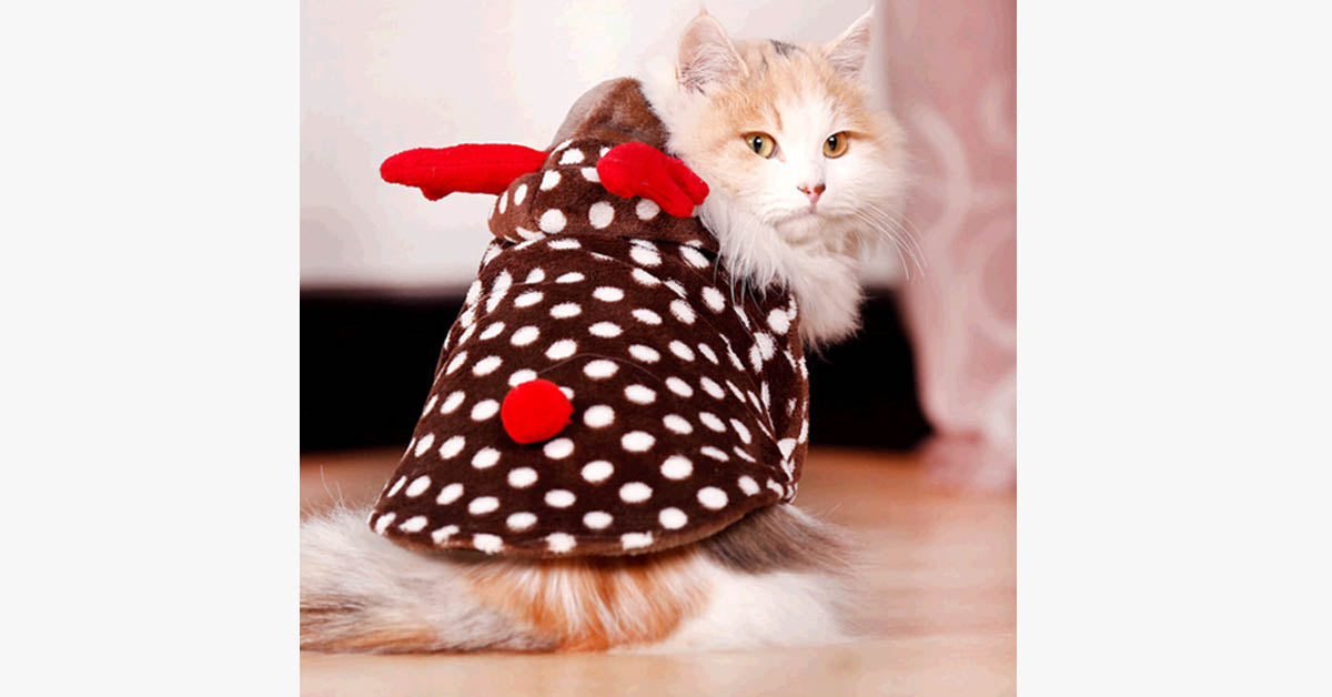 Warm Holiday Cat Costume