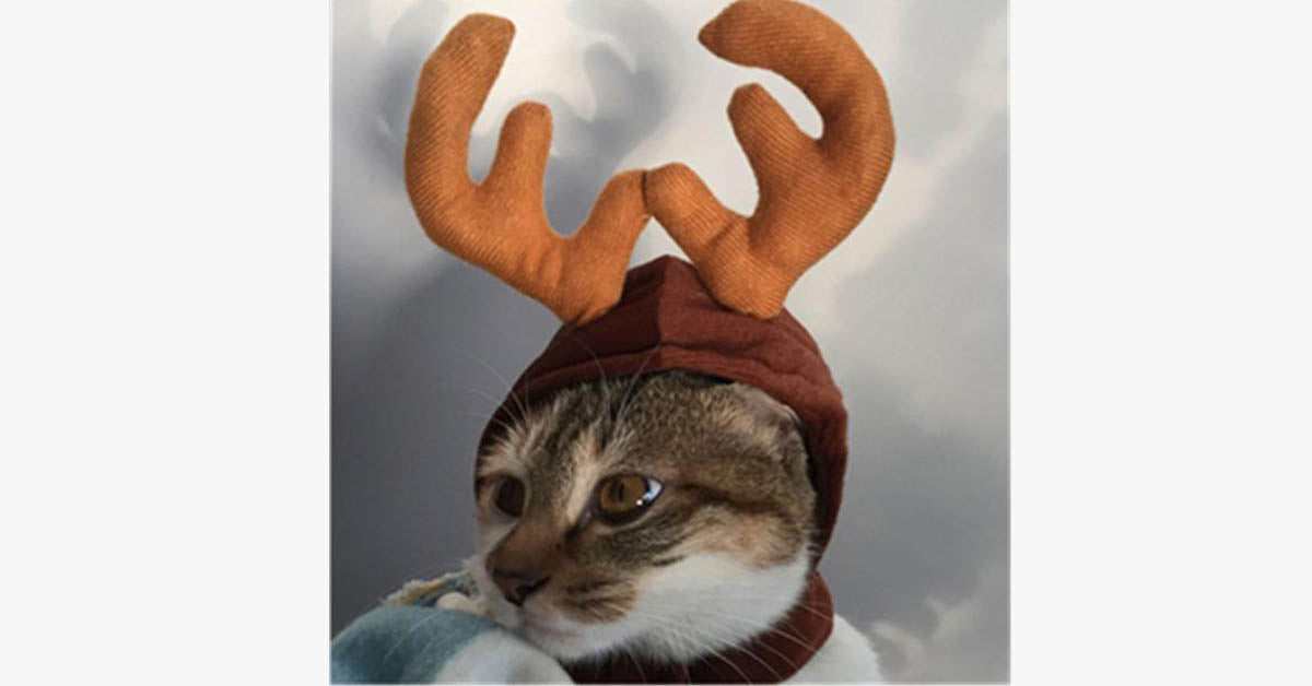 Cute Cat Christmas Antlers