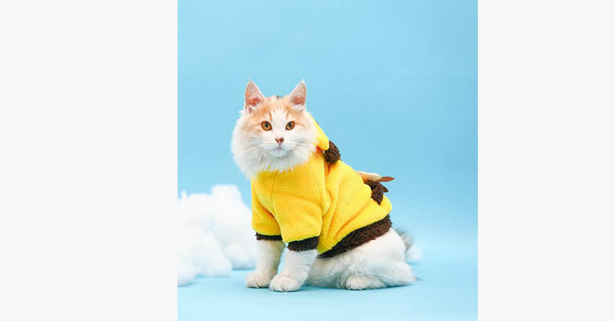 Yellow Coral Fleece with Small Pocket Pet Clothing