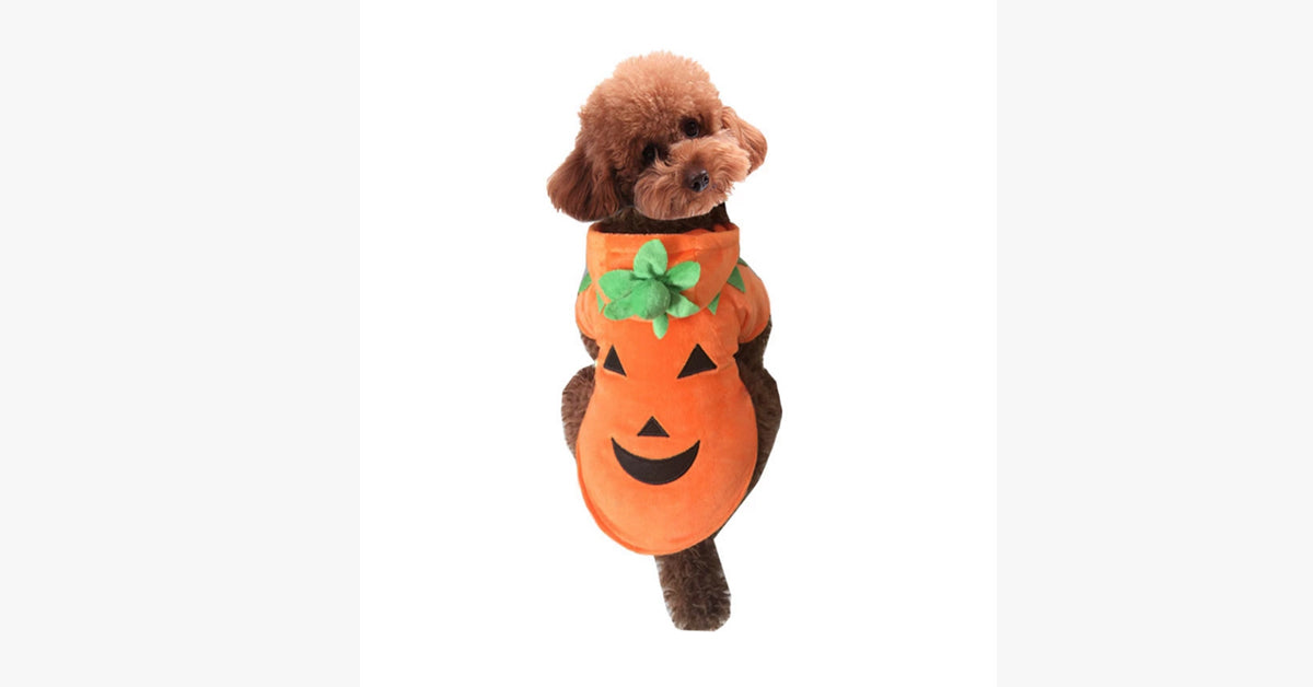 Halloween Dog Clothes pumpkin monster Costume