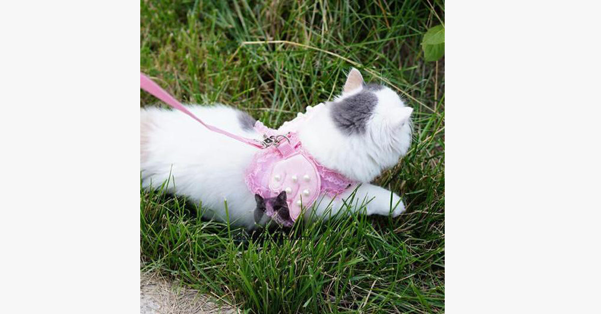 Angel Pet Cat Harness