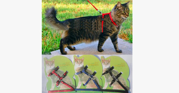Pet Adjustable Nylon Harness Cat Rope Belt