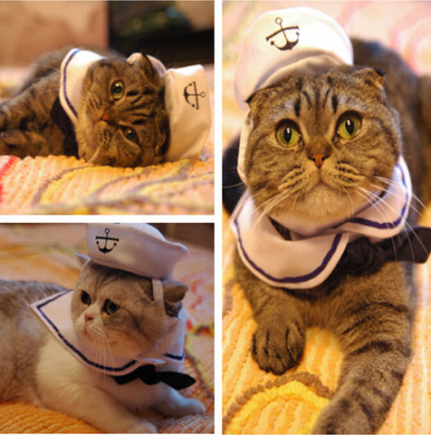 Cute Cat Tie with Anchor Hat Set