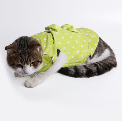 Green Cat Decompression Clothes